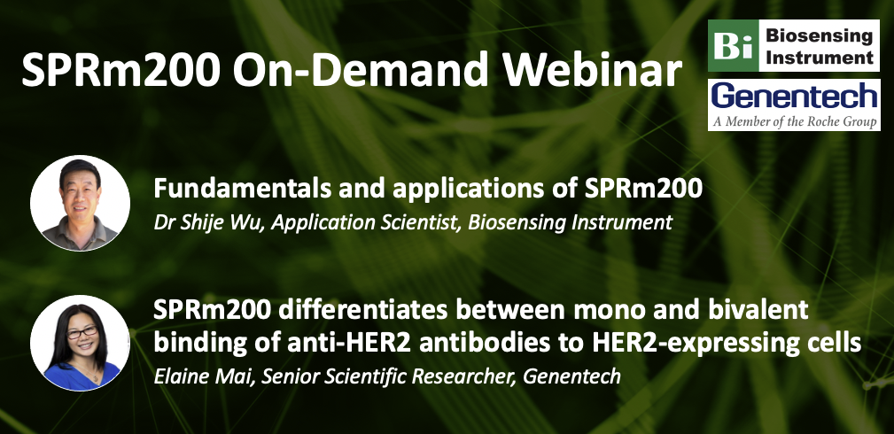 Monovalent and bivalent antibodies characterization with SPRm200